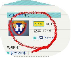 nice400.JPG